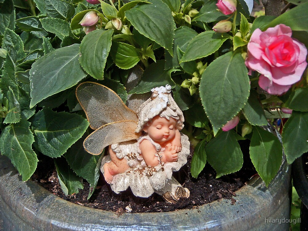 Fairy in the Bizzie Lizzie for both Sals by hilarydougill