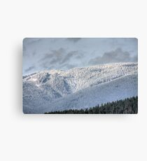 White Hills Canvas Print