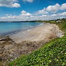 Carne and Pendower beaches -  Roseland -   Cornwall by eddiej