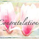 Congratulation Magnolia by Marilyn Cornwell