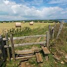 Straw bales at harvest time on the cornwall coast by eddiej