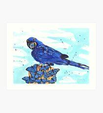 Perroquet et papillons Art Print