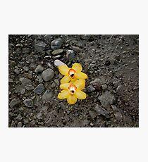 Sunshine on a Rainy Day Photographic Print
