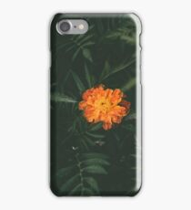 Orange Flower with Leaves iPhone Case/Skin