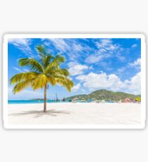 Palm Tree on St Martin Sticker
