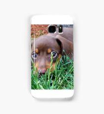 Chocolate Mini Dachshund Samsung Galaxy Case/Skin