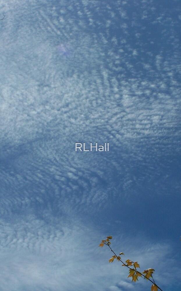 Reach by RLHall