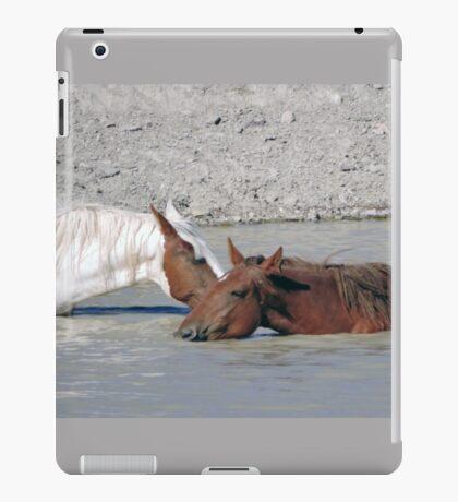 Five O'clock in Sand Wash Basin iPad Case/Skin