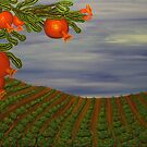 """Pomegranate calm"" by Guy Wann"