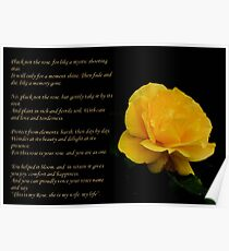 Yellow Rose With Verse - Pluck Not the Rose  Poster