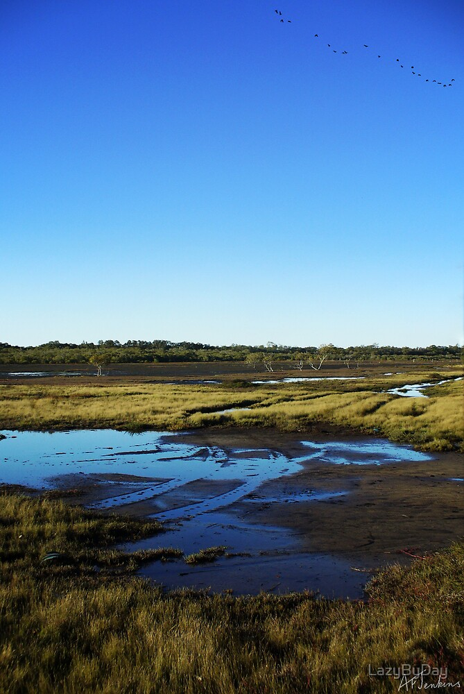 PointHalloranWetlands by LazyByDay
