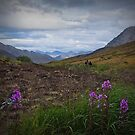 Hiking out of Tombstones by Yukondick