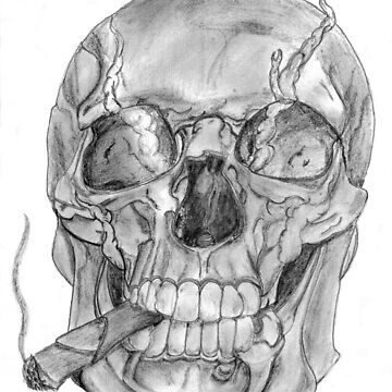 Scull with cigar by Barbarosa