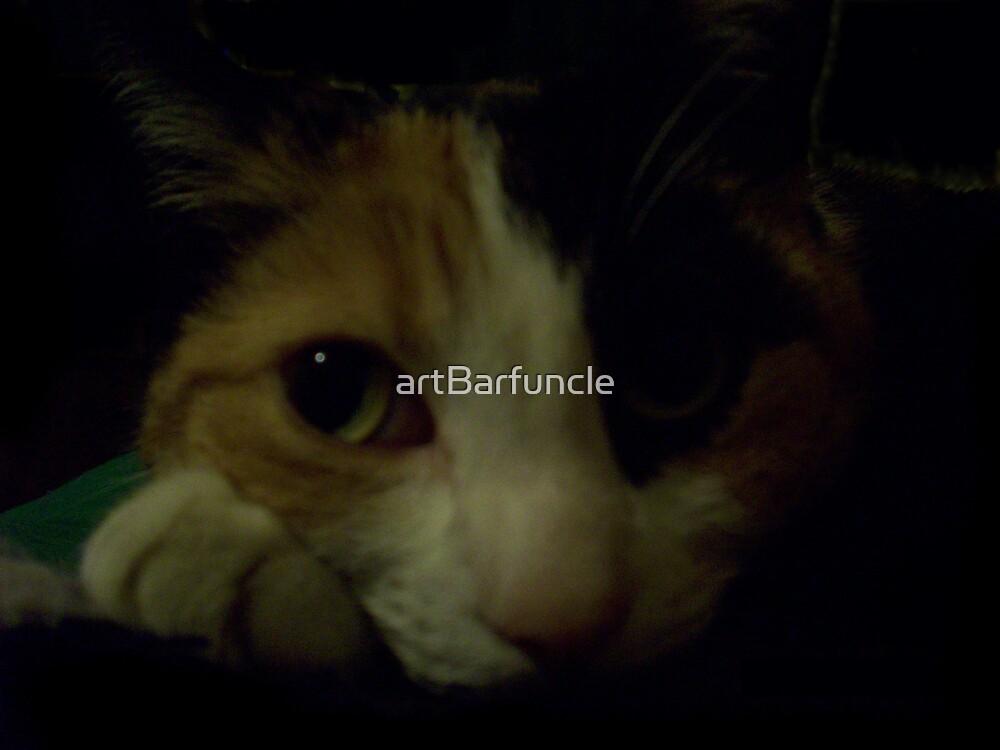 Maralyn (my cat) by artBarfuncle