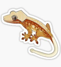 Crested Gecko Red Extreme Sticker