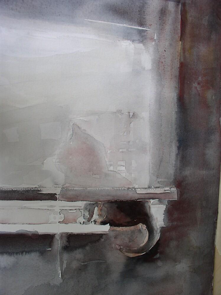 garibaldi ombra by crirossi