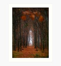 How to open door to paradise . Psalm 127:2 . #autumn . Andrzej Goszcz. Views 1307. Art Print