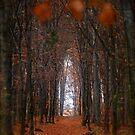 How to open door to paradise . Psalm 127:2 . #autumn . Andrzej Goszcz. Views 1307. by © Andrzej Goszcz,M.D. Ph.D