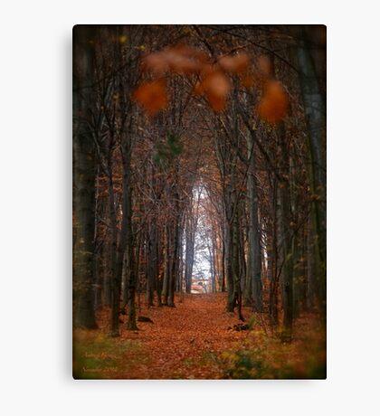 How to open door to paradise . Psalm 127:2 . #autumn . Andrzej Goszcz. Views 1307. Canvas Print