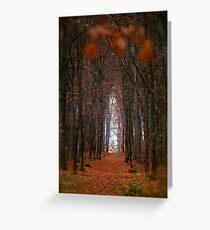 How to open door to paradise . Psalm 127:2 . #autumn . Andrzej Goszcz. Views 1307. Greeting Card