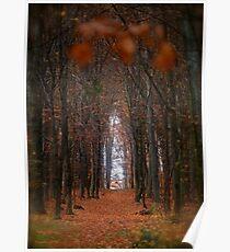 How to open door to paradise . Psalm 127:2 . #autumn . Andrzej Goszcz. Views 1307. Poster