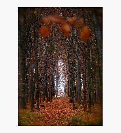 How to open door to paradise . Psalm 127:2 . #autumn . Andrzej Goszcz. Views 1307. Photographic Print