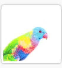 Rainbow Lorikeet Sticker