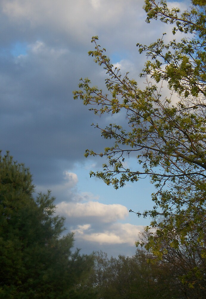 May Clouds by andreatreitman