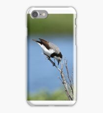 White-fronted Chat - Altona  VIC  (187) iPhone Case/Skin