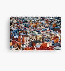 Colors are Life Canvas Print