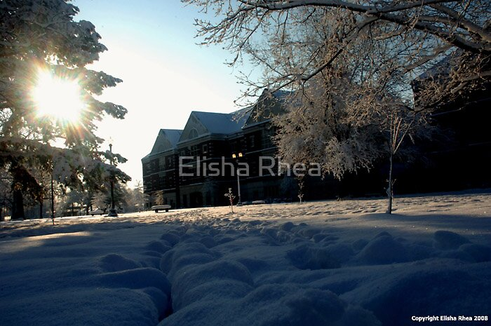 Untitled by Elisha Rhea