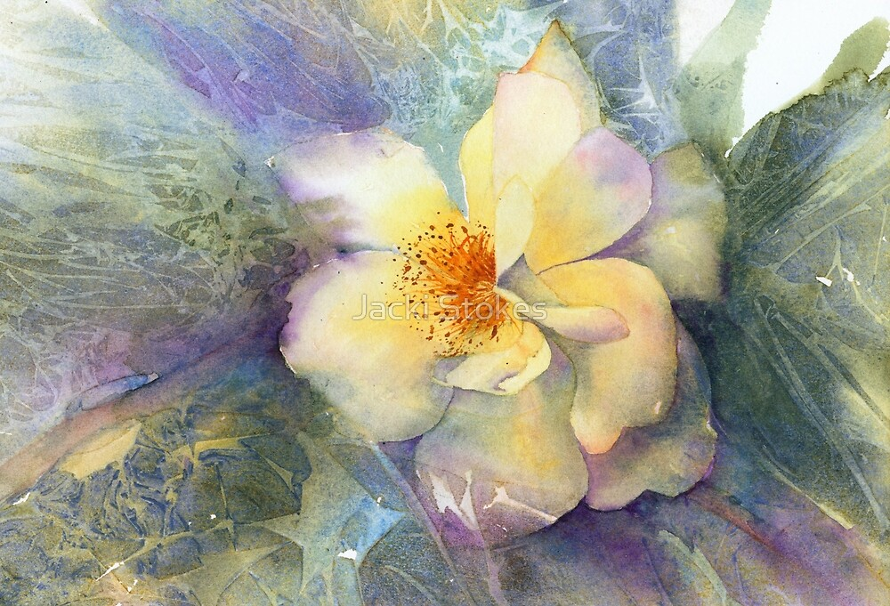 Golden Rose (Original painting sold) by Jacki Stokes
