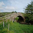 Duck Bridge by dougie1