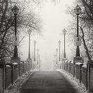 Winters Bridge by Bendinglife
