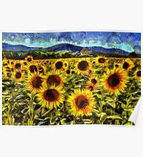 Sunflower Field Van Gogh Poster