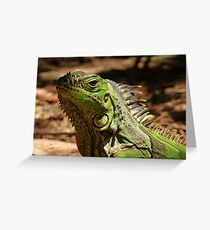 retrato tropical Greeting Card