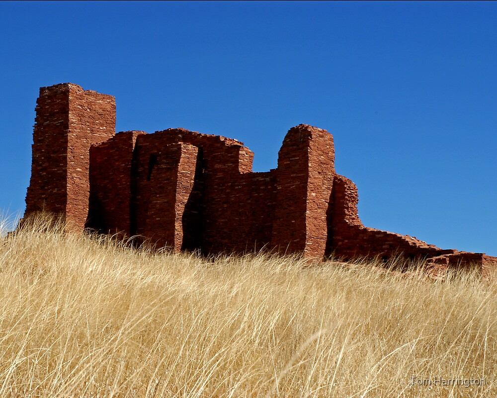 Ruins at Abo, Salinas National Monument, NM by Tom Harrington