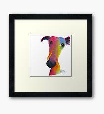 NOSEY DOG 'PUMPKIN' BY SHIRLEY MACARTHUR Framed Print