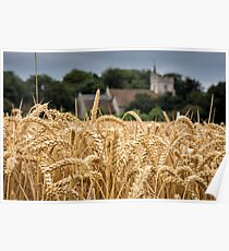 The wheat field Poster