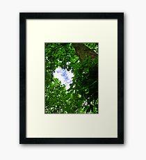 Sky Portal- Inspiring blue sky seen through verdant trees Framed Print