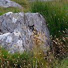 Granite Rock at Merrivale  by lezvee