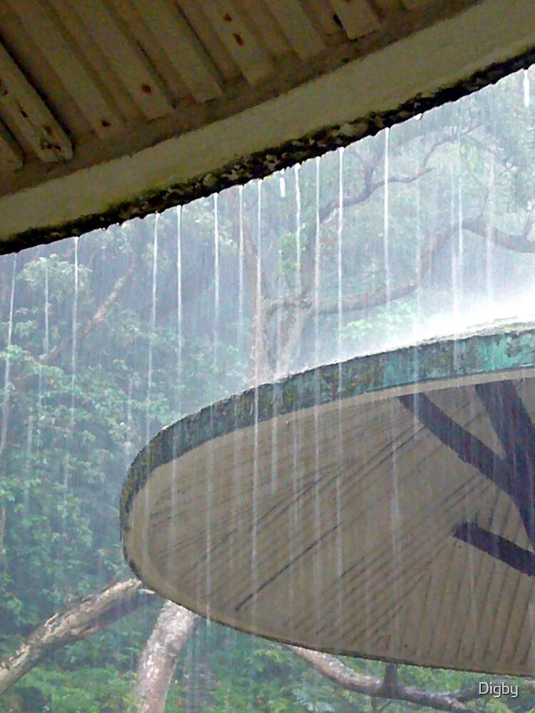Rain by Digby