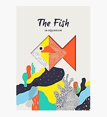 The fish in Aquarium Photographic Print