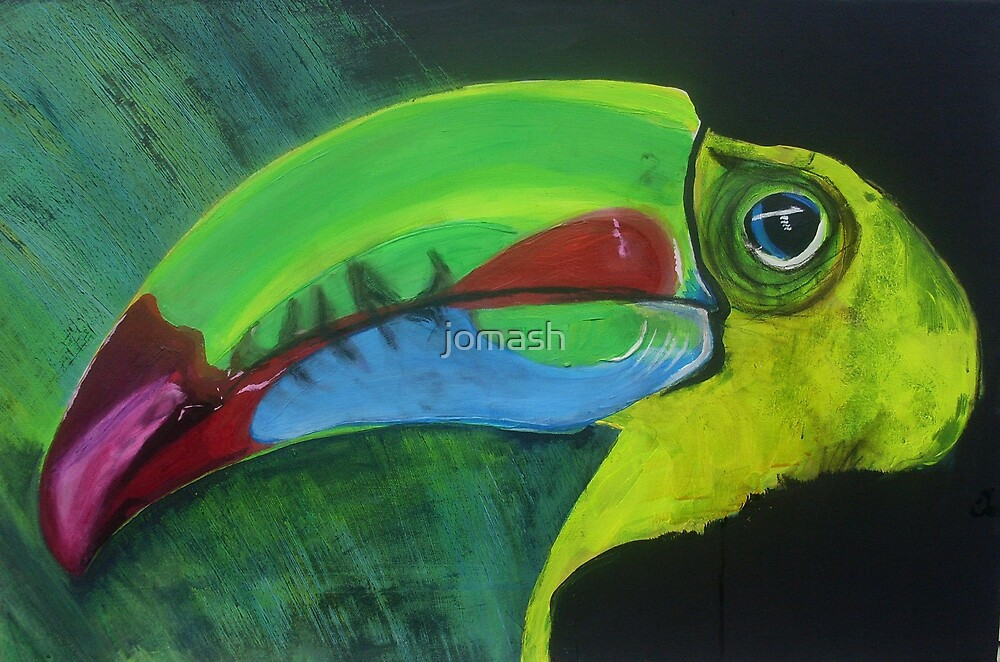 Toucan by jomash