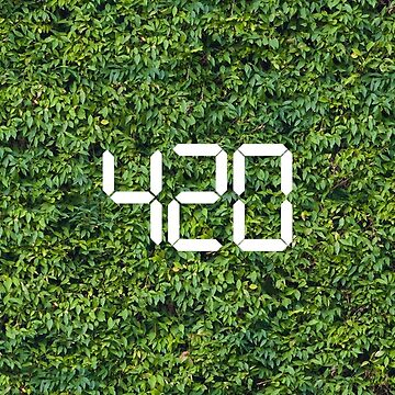 420 Hedge It by Frontzie