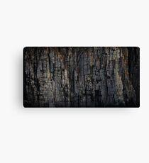 The Rock That Split Gondwana Canvas Print