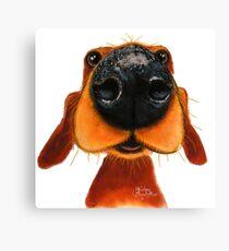 NOSEY DOG 'NOSEY NANDO' BY SHIRLEY MACARTHUR Canvas Print