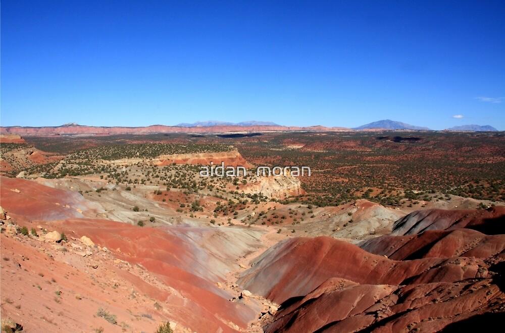 Painted Desert Landscape by aidan  moran
