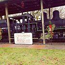 Vernonia Shay locomotive at Christmas  by Dawna Morton