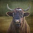 Porträt eines Stiers von vigor